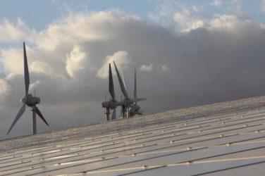 Sauberer Strom statt schmutziges Erdöl